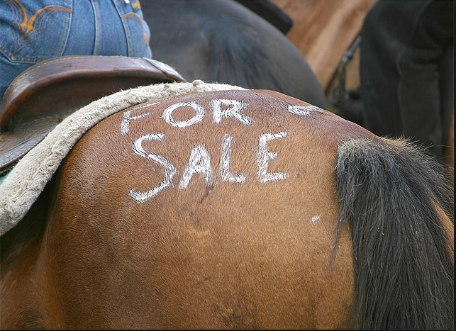 Selling Your Horse