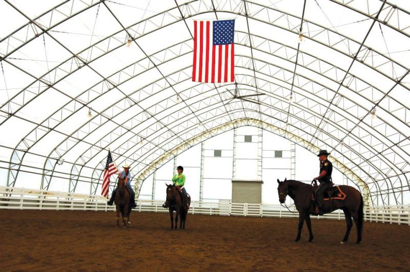 American service horses