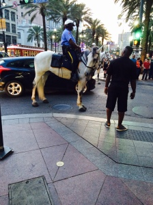 New Orleans Mounted Police