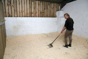 cleaning horse bedding