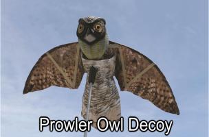 Prowler Owl Decoy