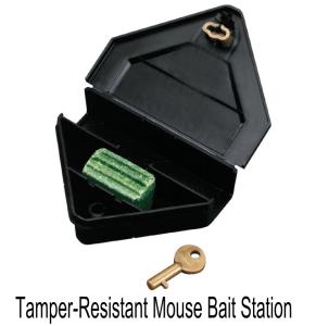 Tamper-Resistant Mouse Bait Station