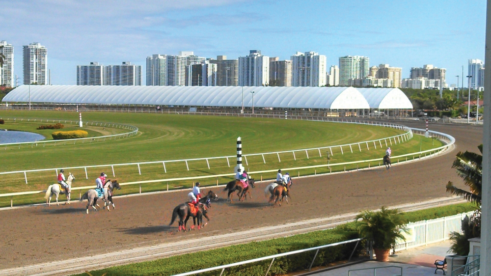83 x 600 at Gulfstream Park, Hallandale, FL