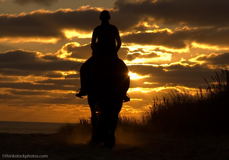 riding horse at night