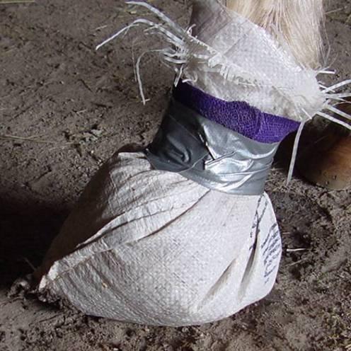 foot in bag